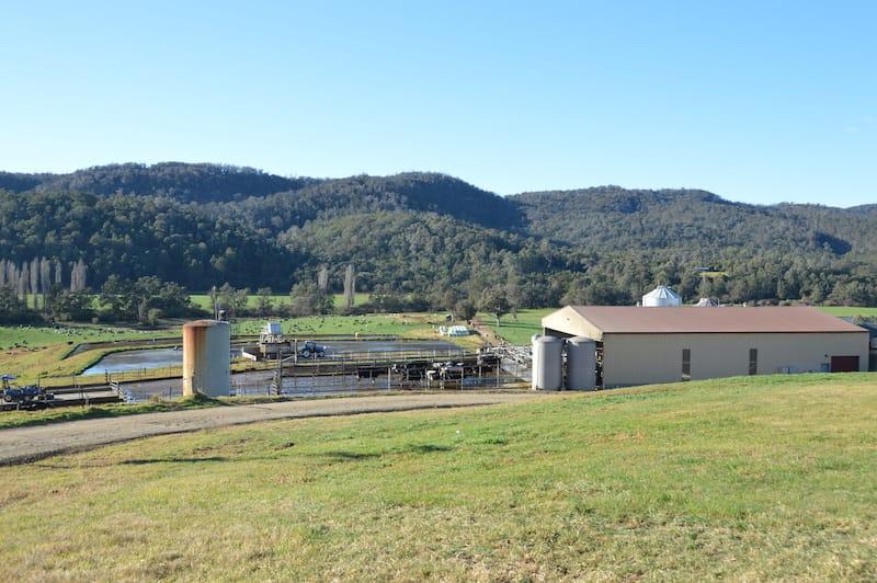 Cedar Grove dairy farm
