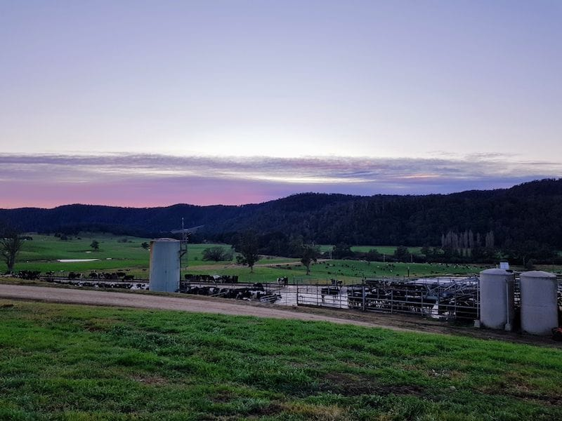 Looking across Cedar Grove dairy farm